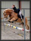 Photo de Sh0p-horses