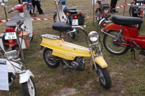 1144 expo de véhicules a francueil 06/2012 dep 37