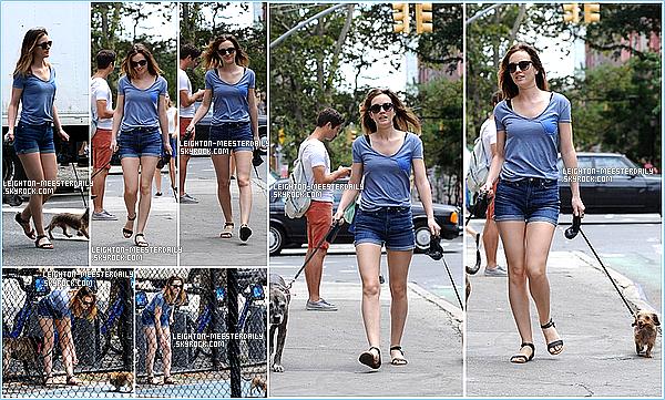 Le 28/07/2014: Leighton a été aperçue promenant ses deux chiens à New-York.   J'adore son short et son t-shirt , je lui accorde un TOP et Vous?