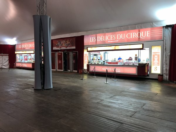 ARLETTE GRUSS OSEZ LE CIRQUE VILLENEUVE D'ASCQ NOVEMBRE 2018