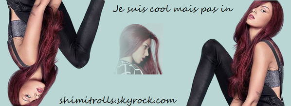 Photo de profil et bannière du blog