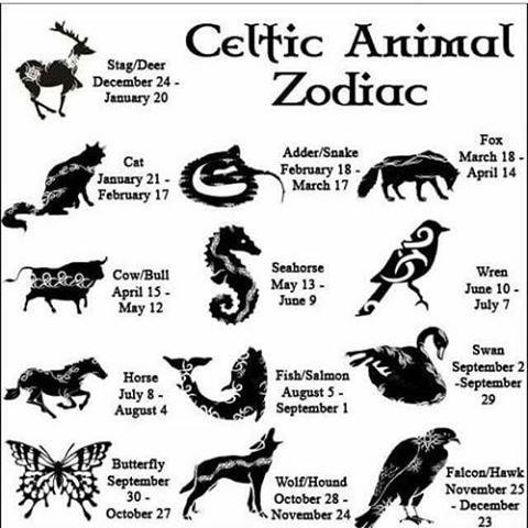 Animal celtique selon votre horoscope