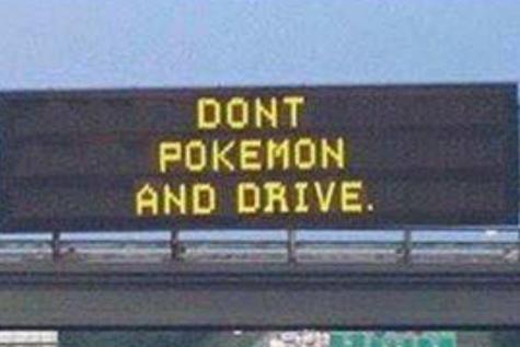 Conseil de la sécurité routière