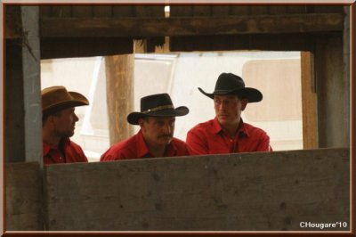 Team Penning au Ranch -> Muppet fribourgeois