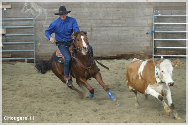 Team Penning au Ranch -> Actions