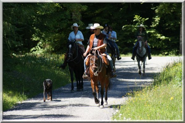 Sortie d'été -> Départ des cavaliers (du dimanche...)