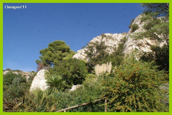 Camargue 2011 -> Zoo de La Barben
