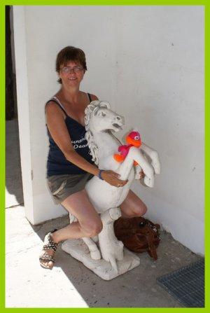 Camargue 2011 -> Les bonnes habitudes!