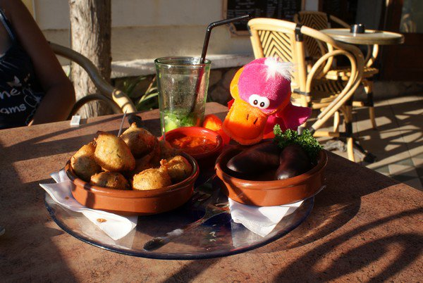 Canard en Camargue -> Les hauts-lieux