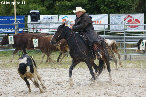 Team Penning de Chatel-Saint-Denis