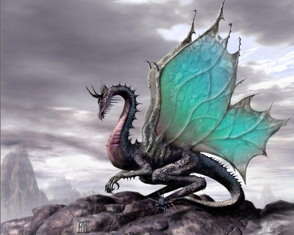 Le Dragon!