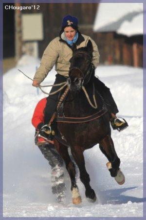 Skijoering à L'Etivaz