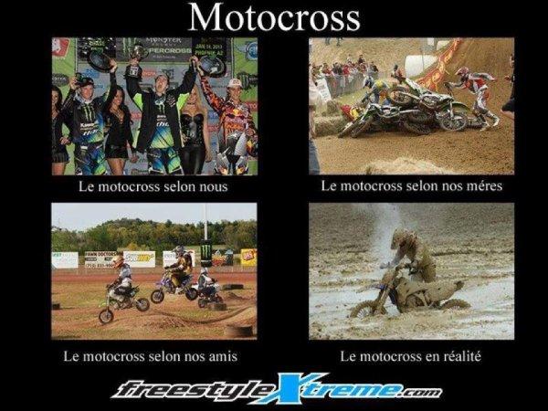 Motocross et cheval