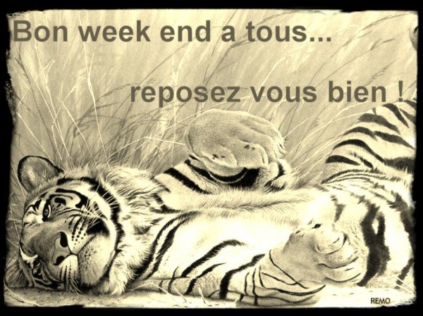 Bon week-end à tous!