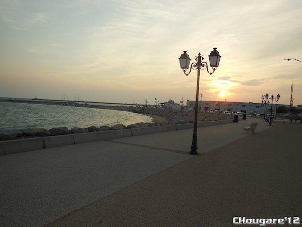 CAMARGUE - Aux Saintes-Maries