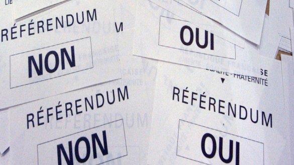 Référendum Rose Bonbon