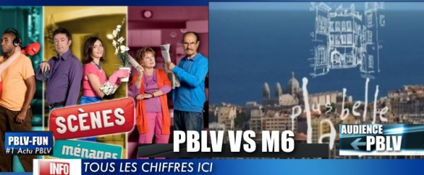 """""""Scènes de Ménages"""" et """"Plus Belle la Vie"""" ne font pas d'ombre au C.A. publicitaire du JT de 20h de TF1"""