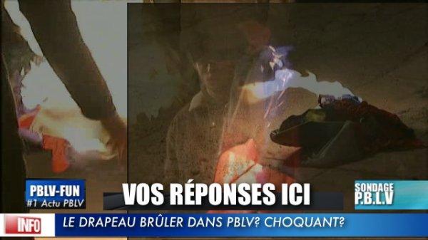 SONDAGE: Raphaël a bruler le drapeau français ! Mais est-ce que les fans sont fâchés.