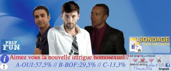 SONDAGE, SUR LA NOUVELLE INTRIGUE HOMOSEXUEL