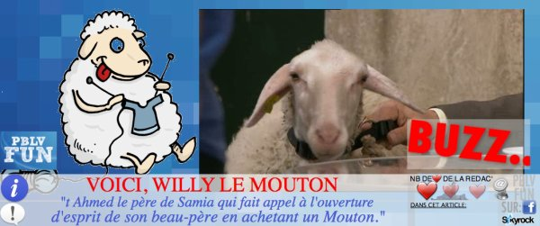 PERSONNAGE: UN MOUTON ARRIVE DANS PLUS BELLE LA VIE !