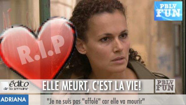EDITO: ANALYSE DE LA MORT D'ADRIANA