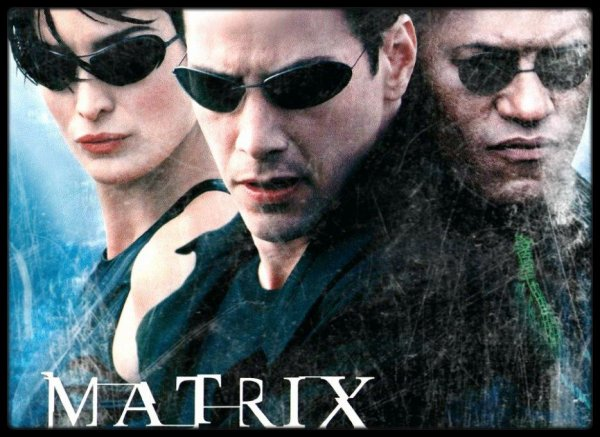 - Trinity - (Film : Matrix)