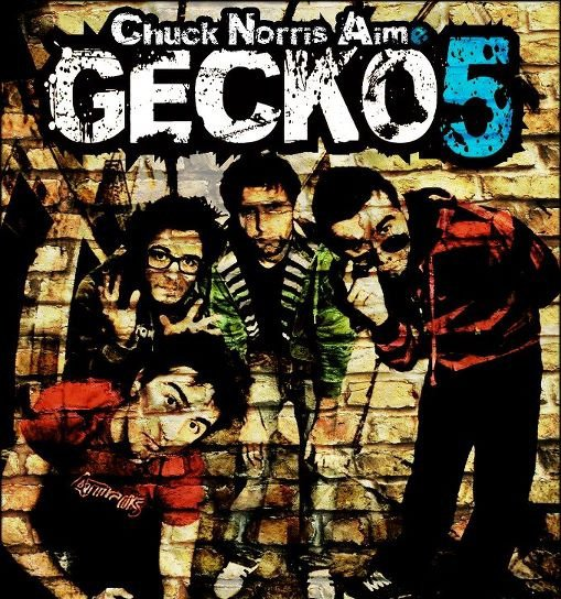 DÉCOUVERTE : GECKO 5