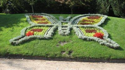 rouen 76 jardin des plantes papillon - Jardin Des Plantes Rouen
