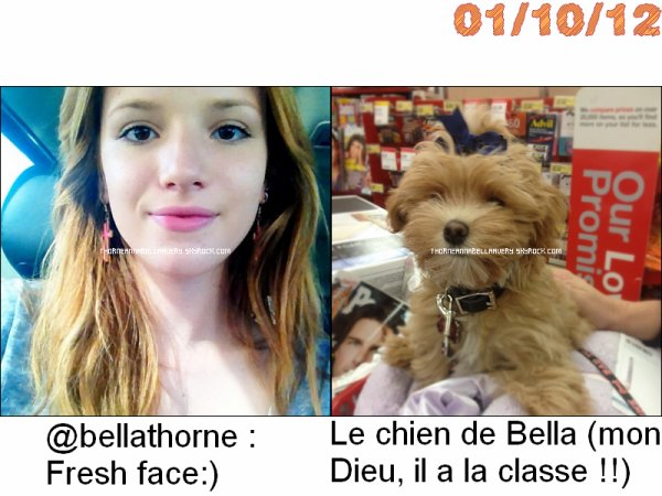Twitter Time du :31/09/12 et du 01/10/12, et photos et vidéos provenant du Mobli de Bella.