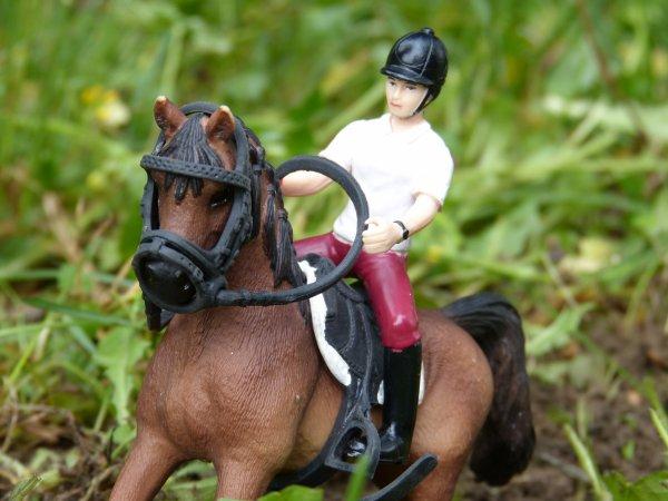 Un cour d'équitation pas génial pour tous.