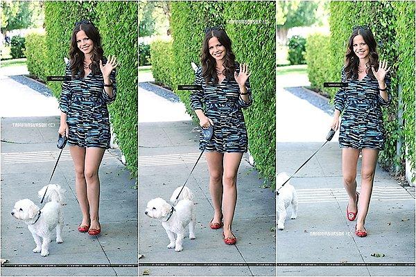 Le 08/05/13 : Tammin a était aperçu dans les rue de PA entrain de promener sont chien