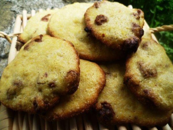 Cookies aux pépites de chocolat au lait & Orange amère Newtree