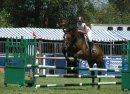Photo de Photo-graphy-horse