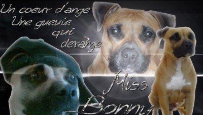 Miss bonny