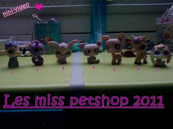 miss petshop 2011
