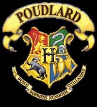 Bienvenue dans la commu Poudlard, voici le règlement