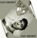 Photo de oui-canari