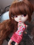 Photo de Maripullip