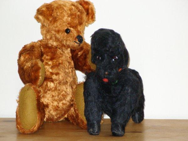 """Un ours inconnu et un petit chien autrichien de la marque """"Berg"""""""