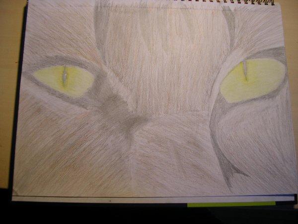 Un dessin fait par moi ! =D