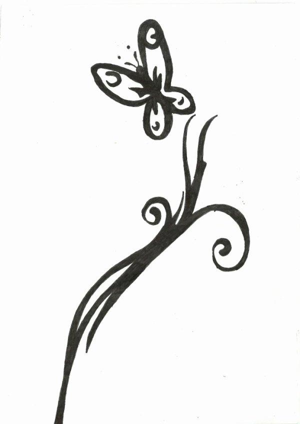 Dessin papillon blog de dessin de mickael - Dessin de petit papillon ...