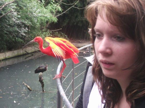 ma fille au parc aux oiseaux