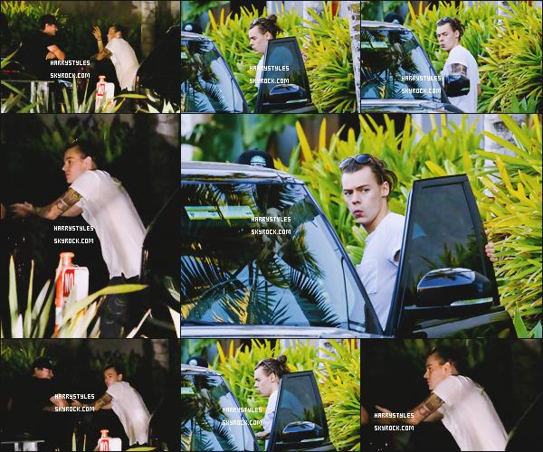 21.11.2015 - Notre petit Harry Styles a été aperçu au café Habana en compagnie d'un ami, à Malibu ! Je m'excuse pour la qualité de certaines photographies, mais sinon c'est un top que nous fait H. Dis moi H aurais-tu les cheveux gras ?