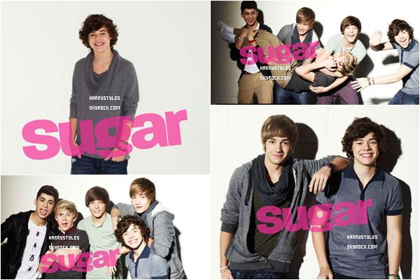 Ce mois-ci les garçons font la couverture du Magazine Sugar ! J'aime bien ce photo-shoot. Les garçons commencent a faire leur petite place dans le monde du show.