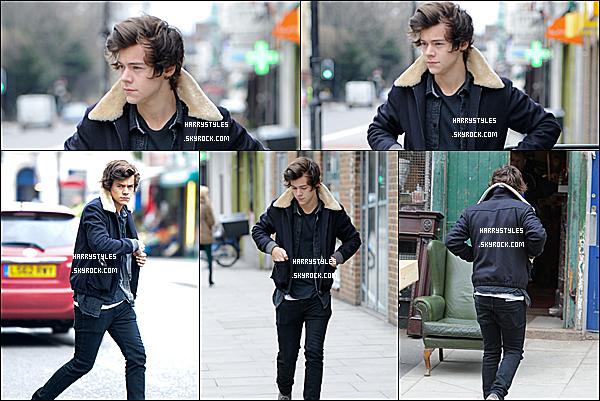 22/02/13 : Harry a été aperçu tout seul entrain de faire du shopping dans le Nord de Londres.  Un gros gros top pour Harry. J'aime bien cette sortie de cette année. Demain la tournée démarre et oui mes ami(e)s.