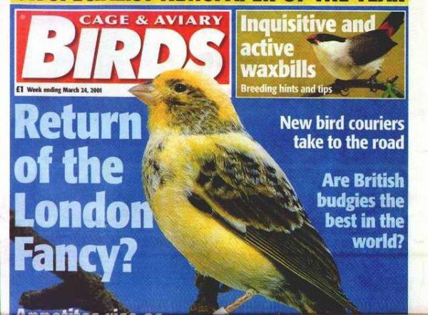 Razas de canarios extinguidas