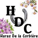Photo de shop-haras-corbiere