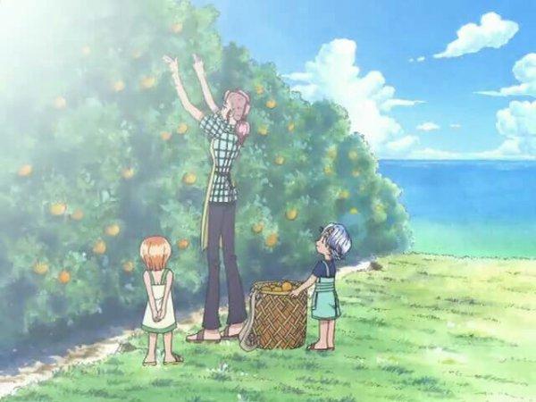 Nami, Belmer & Nojiko (Flashback Nami) - Arc-Post-Alabasta