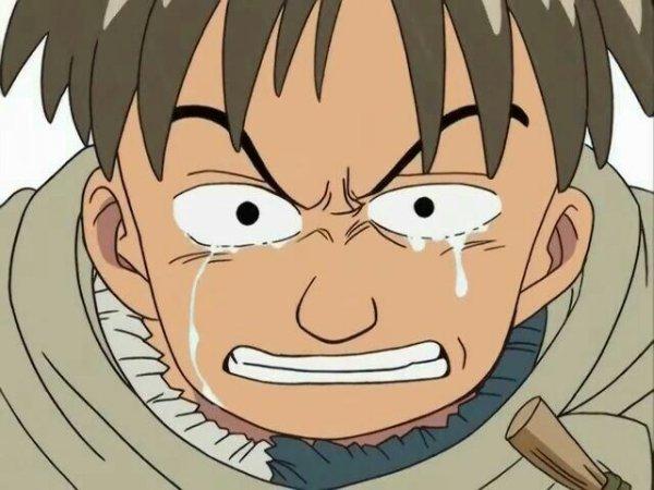 Hamu - SP 01, La descente de Luffy ! La grande aventure sur la mer inexplorée