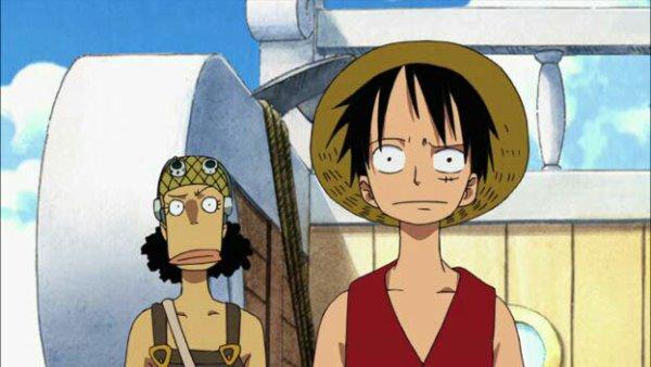 Equipage du Chapeau de Paille - Film 08, Episode d'Alabasta : Les pirates et la Princesse du désert